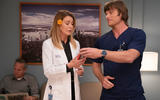 greys-anatomy-cita-ideal-1