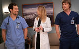 greys-anatomy-cita-ideal-3